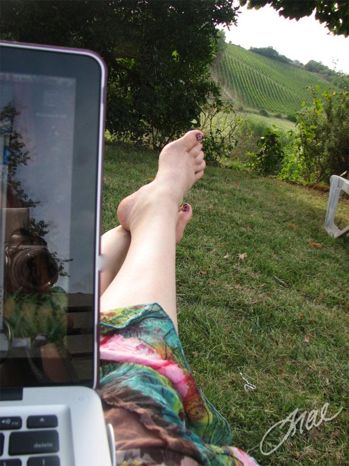Overlooking Tuscany Vineyards Chiusi Tuscany, Italy 2010
